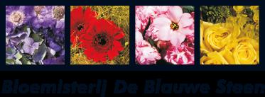 https://www.bloemisterij-deblauwesteen.nl/images/logo.png